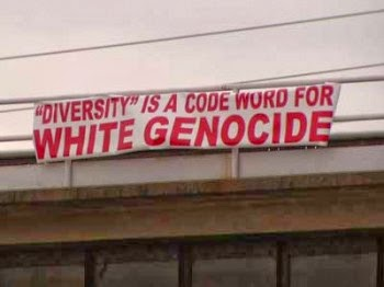 -Diversity- White Genocide 2