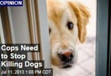 cops-need-to-stop-killing-dogs