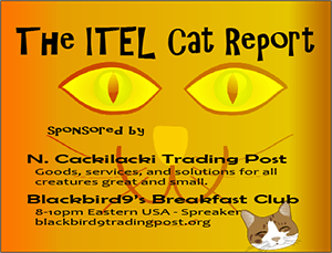Our Sponsors – The ITEL Cat Report
